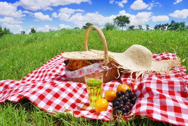 Правила хорошего пикника