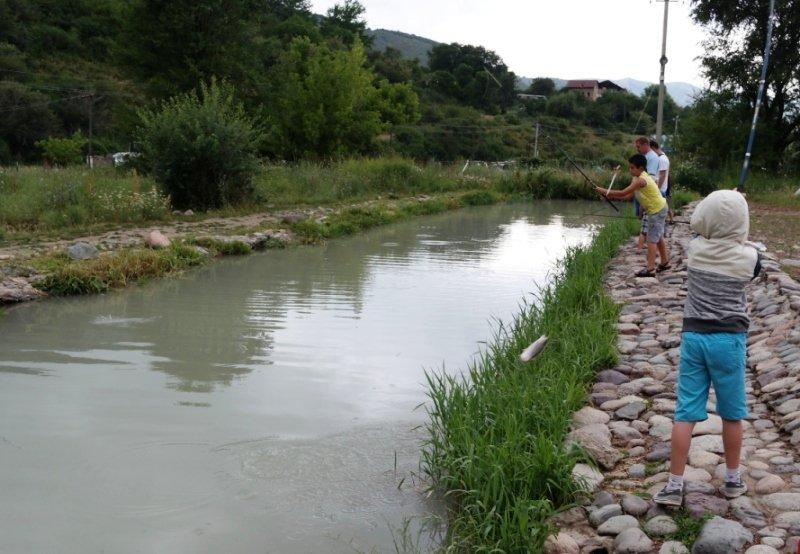 Форелевое хозяйство в Тургене
