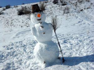 чем заняться зимой